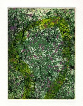 SPRING 2, multi-plate etching, BFK Rives 280gsm, 14 x 10cm, edition 6, 2007