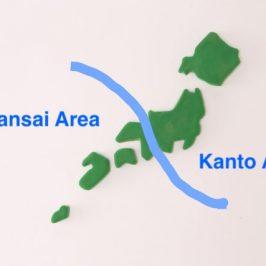 Travelling to Japan   Kanto Taste vs Kansai Taste